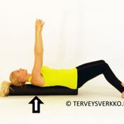 Journal of Bodywork (ENG): Pilatesrulla harjoitteet